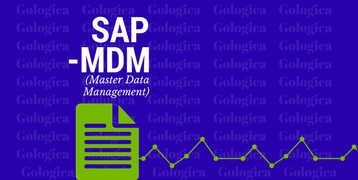SAP MDM TRAINING