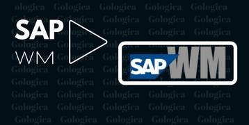 SAP WM TRAINING